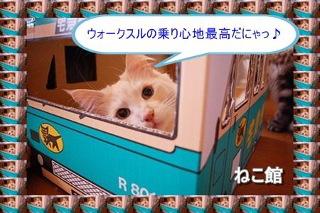 blog10_20160223101300898.jpg