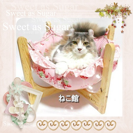 blog20_20160311111847948.jpg