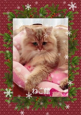 blog6_2015122413435969d.jpg