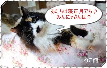 blog_20151228145818128.jpg