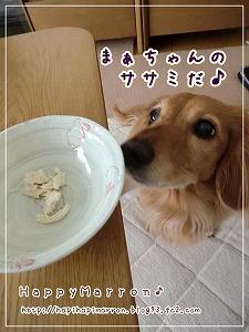 お腹の状態1