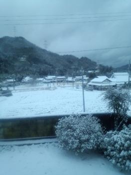20160120雪降り