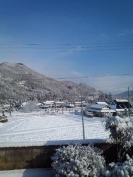 20160125雪降り2
