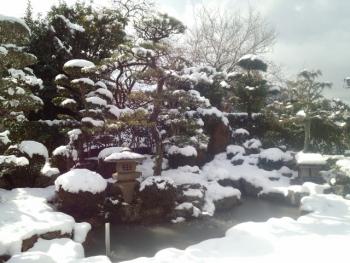 20160207雪降り4