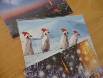 冬のポストカード3枚を100円で購入