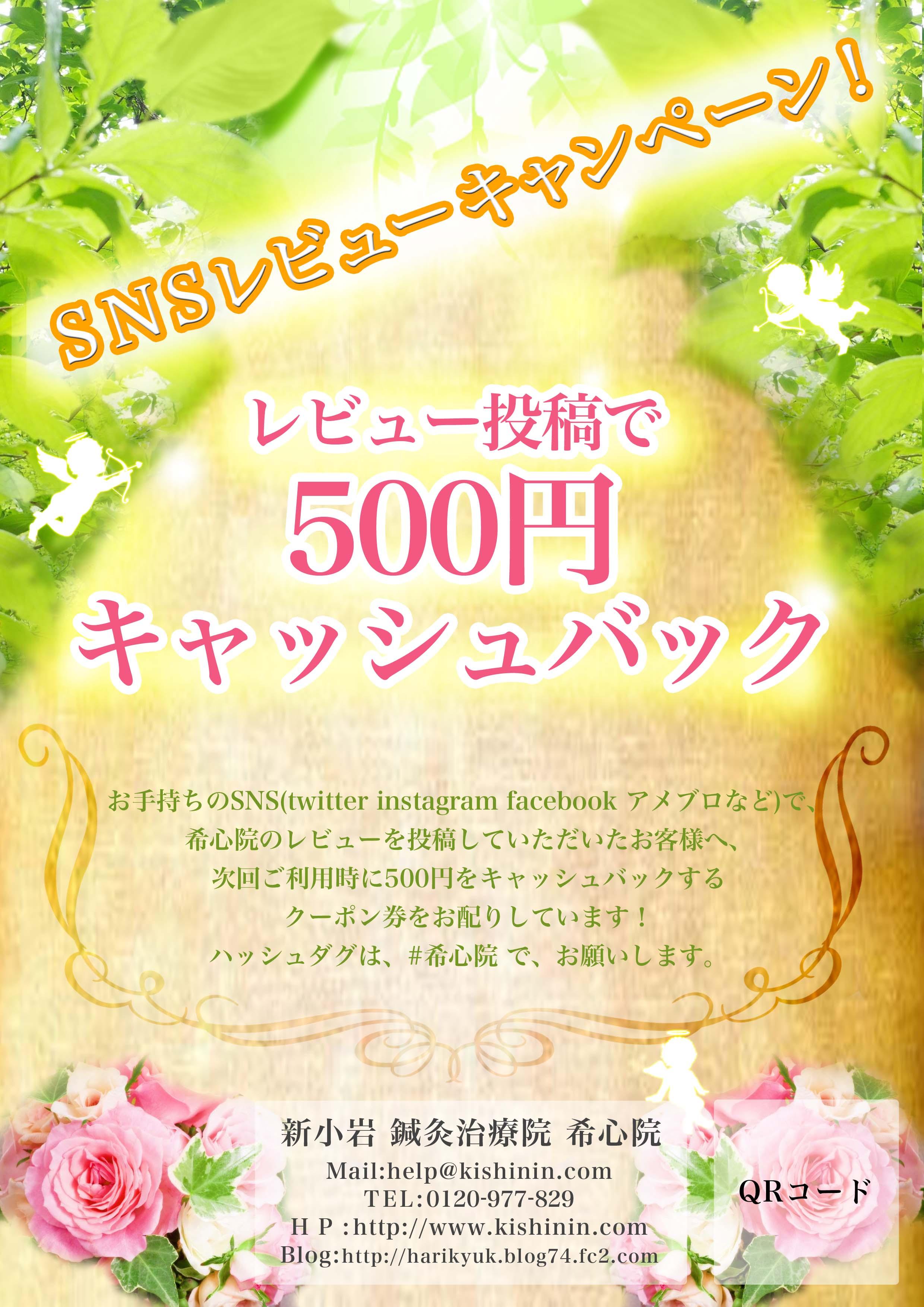 500-k2.jpg