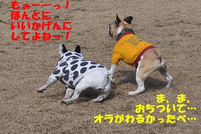 CSC_0253.jpg