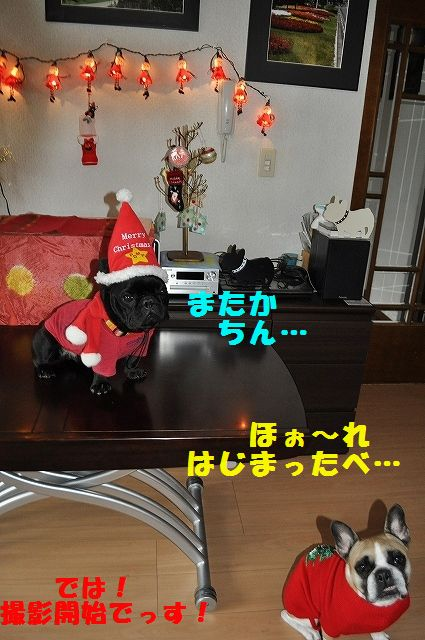 DSC_0075_201512241410257c1.jpg