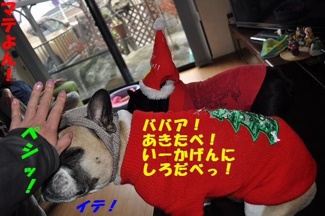 DSC_0090_20151224102548e12.jpg