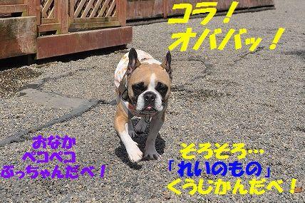 DSC_0199_20160224095717378.jpg