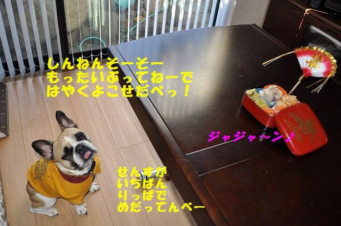 DSC_0213_20160102190740055.jpg