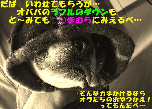IMG_1163.jpg