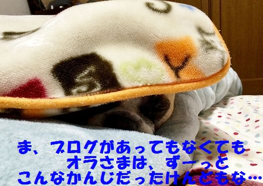 IMG_2134.jpg