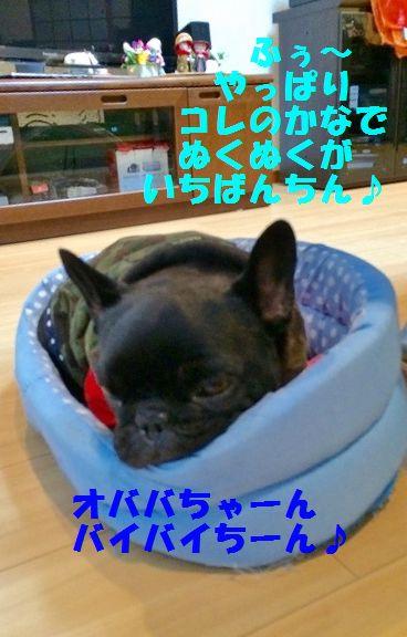 IMG_2167.jpg