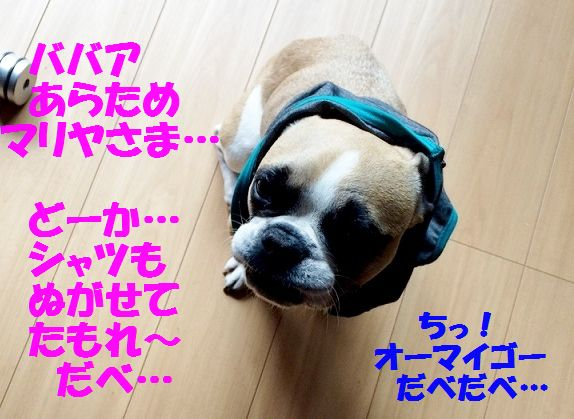 IMG_2626.jpg