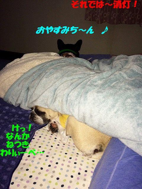 IMG_3221.jpg
