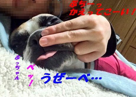 IMG_9425.jpg