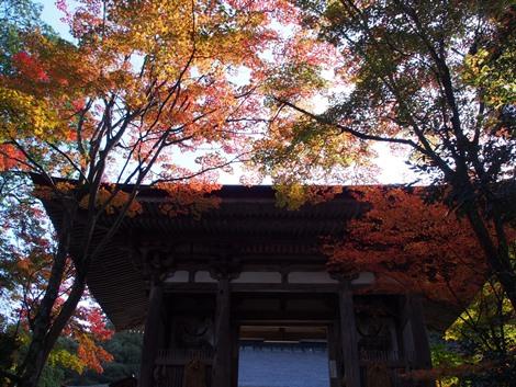 二天門と紅葉