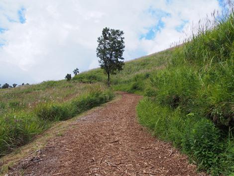 押戸岩の丘へ