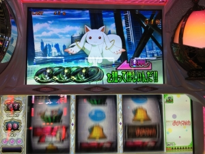 2015-11-24-01 野生ナビ