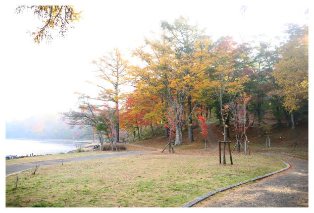 2015-11-09-10.jpg