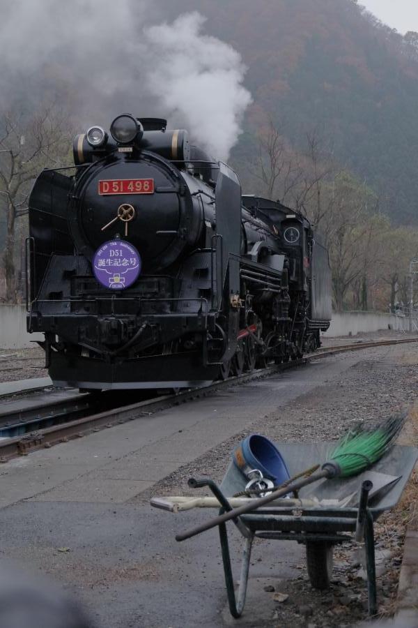 151121red-purple.jpg