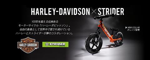 Harley_201512091705194e1.jpg