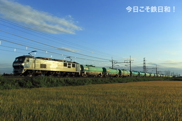 _MG31352.jpg