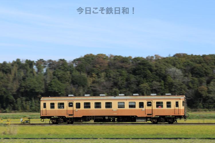 _MG32018.jpg