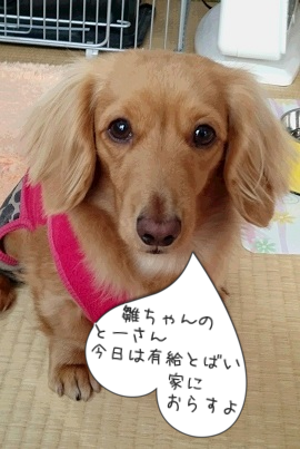 ここ… 長崎かぁ?