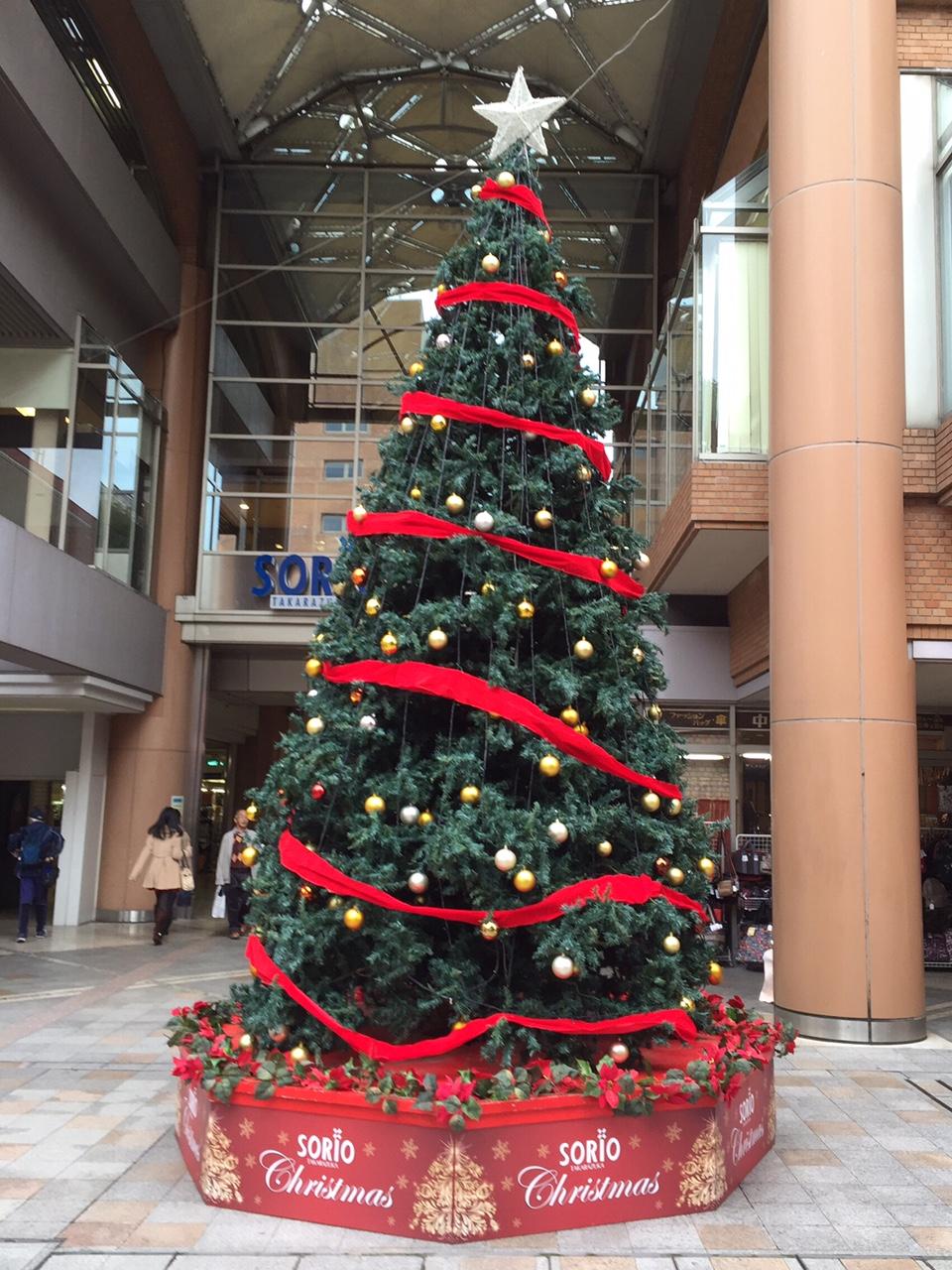 tree_201512150009470a0.jpeg