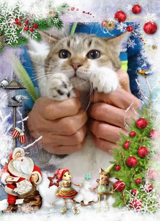 ちくわクリスマス仕様2