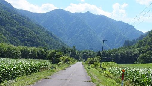 パンケヌーシ林道 (5)①