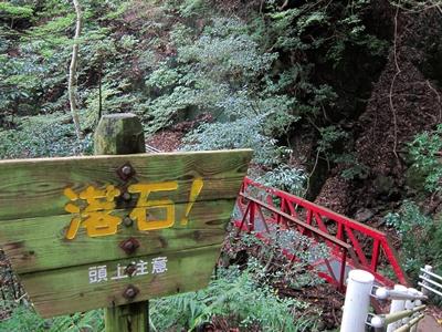 2015_1121伊豆の山0031