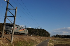 EF510-500_283