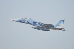 Hyakuri AB_F-15DJ aggressor_22