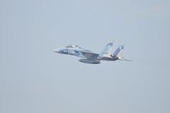 Hyakuri AB_F-15DJ aggressor_23