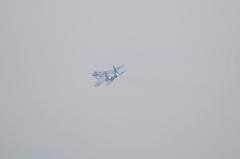 Hyakuri AB_F-15DJ aggressor_24
