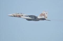Hyakuri AB_F-15DJ aggressor_25