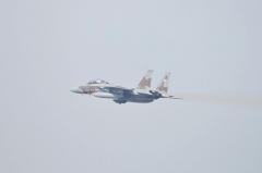Hyakuri AB_F-15DJ aggressor_26