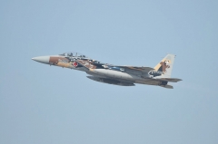 Hyakuri AB_F-15DJ aggressor_28