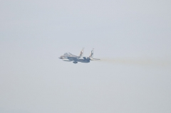 Hyakuri AB_F-15DJ aggressor_30