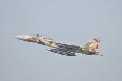 Hyakuri AB_F-15DJ aggressor_31