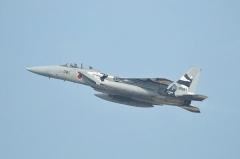 Hyakuri AB_F-15DJ aggressor_34