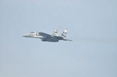 Hyakuri AB_F-15DJ aggressor_35