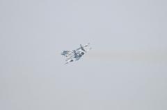 Hyakuri AB_F-15DJ aggressor_36