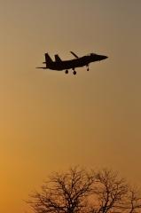 Hyakuri AB_F-15J_433