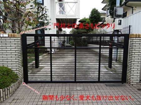 DSC00234-2-2.jpg