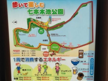 151220higasiuramarathon~ (6)