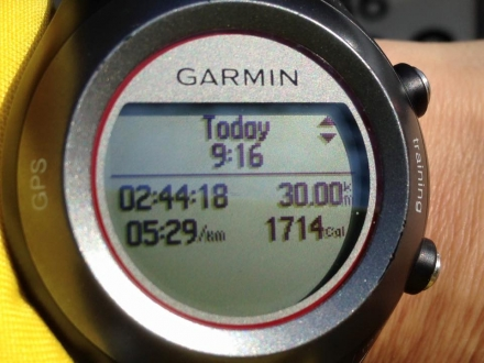 160131suzurun30km (4)